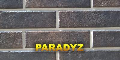 Каталог клинкера Paradyz